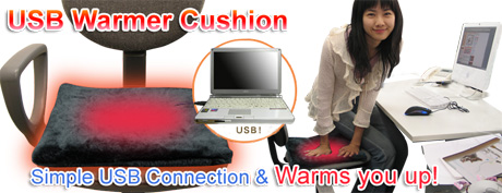 usb_warmer_cushion.jpg