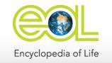 eol_logo_header.png
